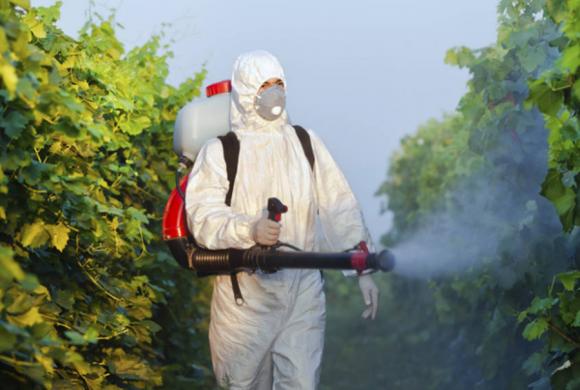 ЕС классифицирует 70 биопестицидов как препараты с «низким риском» фото, иллюстрация