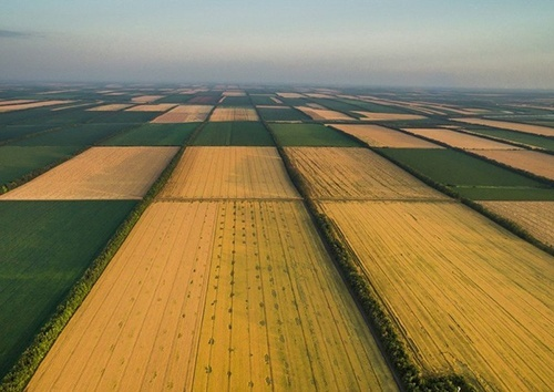 Украинские аграрии придумали как запустить земельный рынок фото, иллюстрация