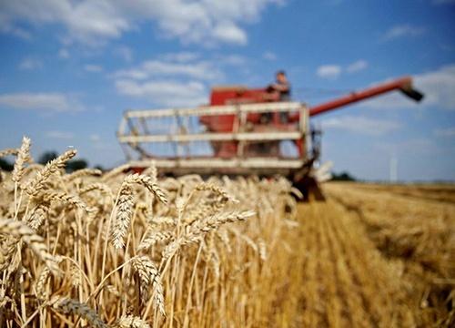 Аграрные госпредприятия передали под контроль Минэкономики фото, иллюстрация