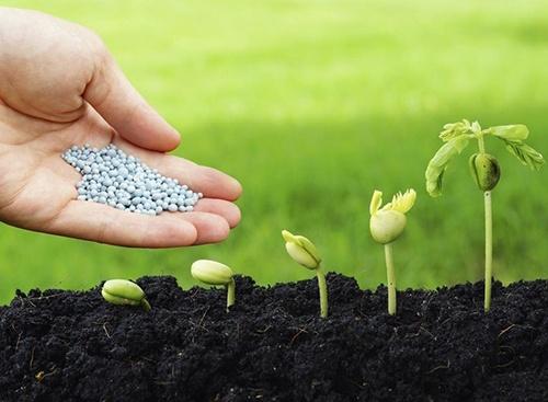 Американцы рассматривают возможность производства удобрений в Украине фото, иллюстрация