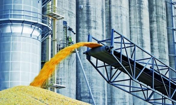 ДФС перевірить документи найбільшого експортера соняшникової олії фото, ілюстрація
