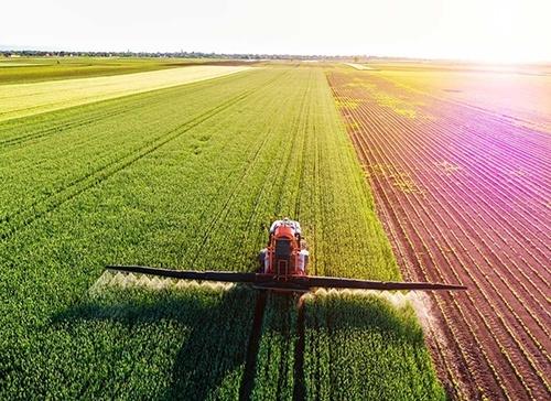 Правительство на треть урезало поддержку агросектора на 2020 год фото, иллюстрация