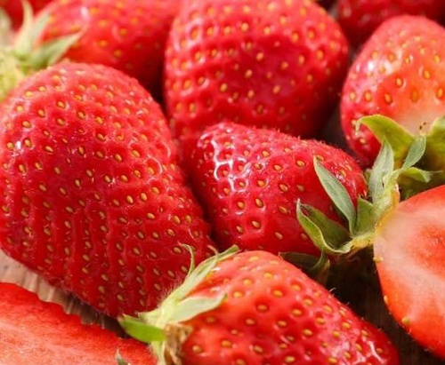 Українська компанія домовилася про великі поставки полуниці до Франції фото, ілюстрація