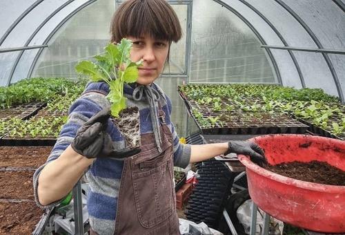 Українські фермери почали заробляти на їстівних квітах фото, ілюстрація