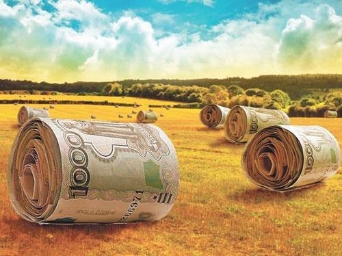 Світовий банк пропонує Україні створити Агентство гарантування кредитів для фермерів фото, ілюстрація