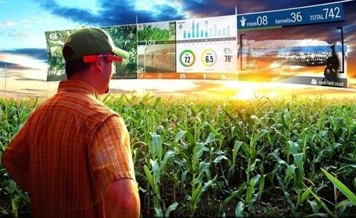 Штучний інтелект Microsoft буде працювати в агросекторі Індії фото, ілюстрація