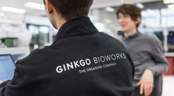 Совместное предприятие Bayer и Ginkgo Bioworks получило имя, CEO и план фото, иллюстрация