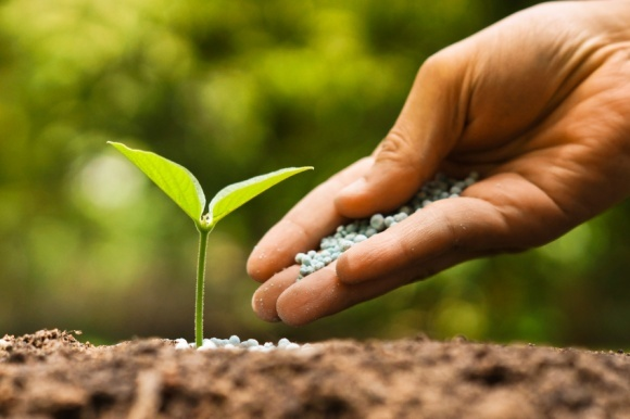 ПАО «Аграрный фонд» начинает весеннюю кампанию по продаже минеральных удобрений фото, иллюстрация