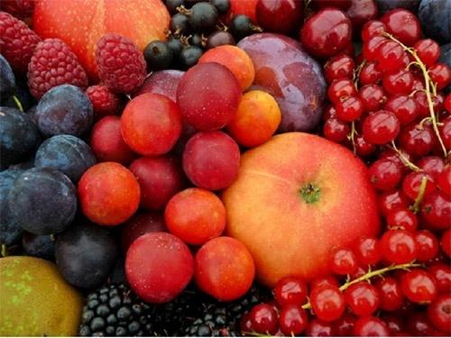 Молдова субсидує плодово-ягідні насадження фото, ілюстрація