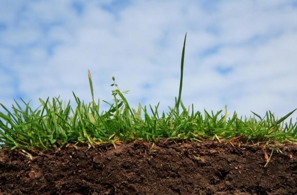 General Mills инвесирует миллионны в здоровье почвы фото, иллюстрация