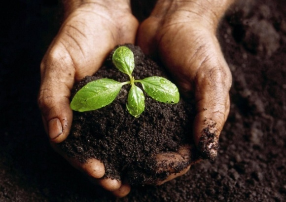 На Львовщине реализуют программу воспроизводства плодородия почв фото, иллюстрация