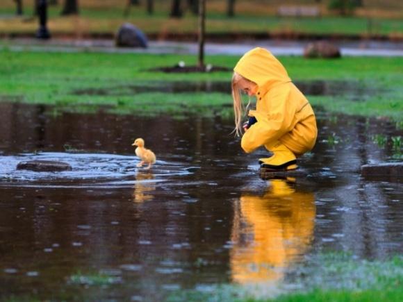 Май в Киеве оказался рекордно холодным и дождливым фото, иллюстрация