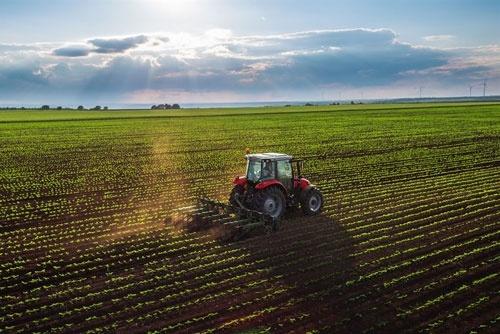 В Україні 60% ОТГ підтримують введення обігу земель, - Мінекономіки фото, ілюстрація