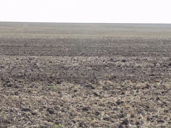 Фермерские хозяйства не будут останавливать посевные работы фото, иллюстрация