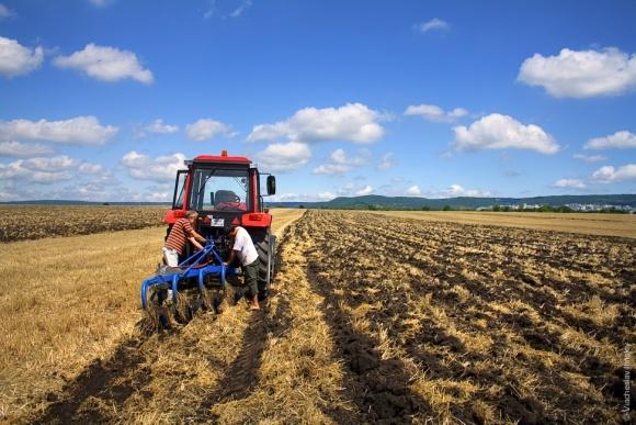 Український аграрій має інші переваги, ніж британський або німецький, - експерт фото, ілюстрація