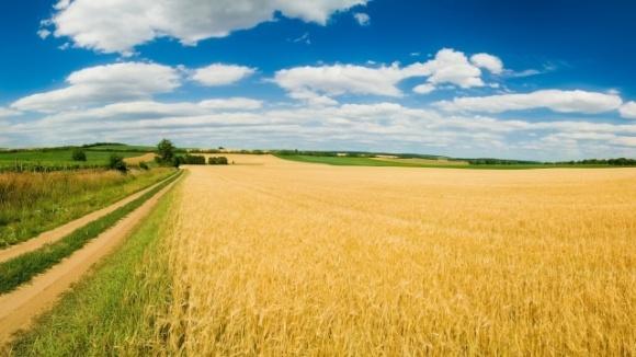 Сільське господарство в Білорусі адаптують до змін клімату фото, ілюстрація