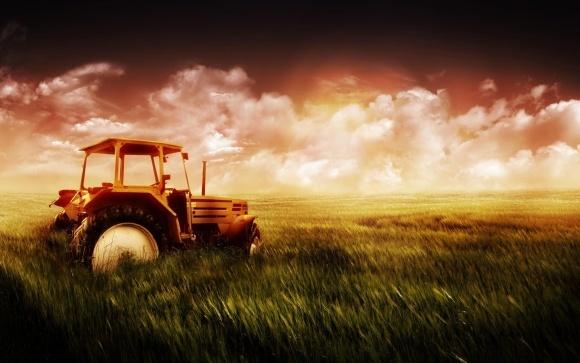Нова методика грошової оцінки землі вплине на орендну плату для аграріїв фото, ілюстрація