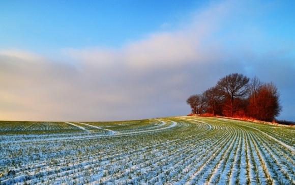 В Україні кардинально зміниться клімат фото, ілюстрація