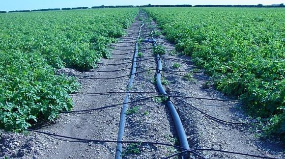 На Харьковщине экологи добились штрафа для фермеров на 1 млн грн  фото, иллюстрация