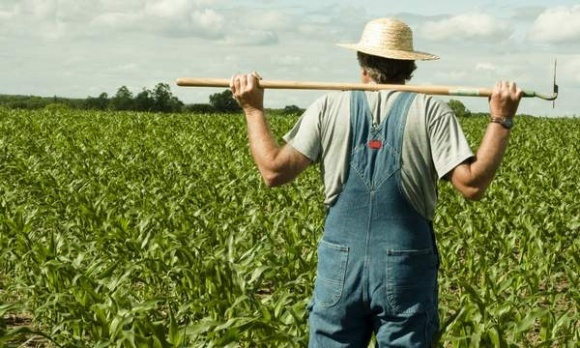 UKRAVIT помогает аграриям справиться со сложными условиями нынешней весны фото, иллюстрация