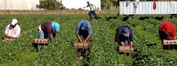 В Україні ініціюють впровадження вільного трудового договору для малого й середнього бізнесу фото, ілюстрація