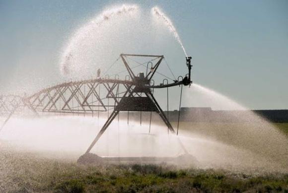Дорогая экономия: как энергосервисные компании наживаются на аграриях фото, иллюстрация