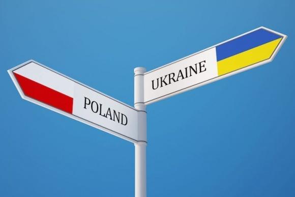 Вітчизняним аграріям простіше відкрити бізнес в Польші, ніж удома фото, ілюстрація