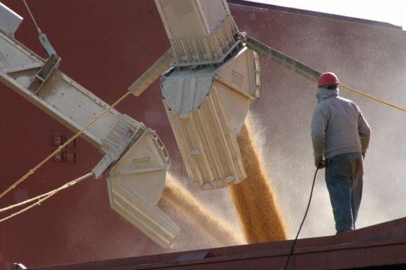 Нова інструкція про облік зерна створить умови для корупції, - АМЕУ фото, ілюстрація