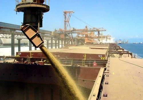 Україна продовжує скорочувати відвантаження зернових з портів фото, ілюстрація