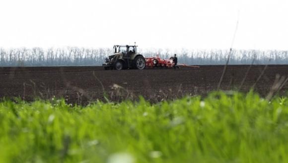Агрохолдинги купуватимуть землі на підставних осіб, але всі землі не розкуплять фото, ілюстрація