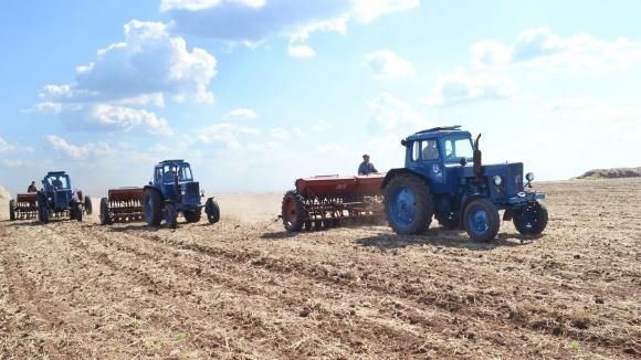 На Полтавщине пересеивают кукурузу, сою и сахарную свеклу фото, иллюстрация