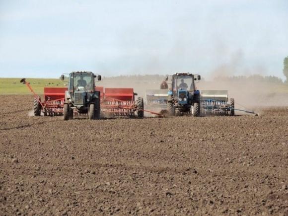 На Херсонщине начинают осеннюю посевную в условиях засухи фото, иллюстрация