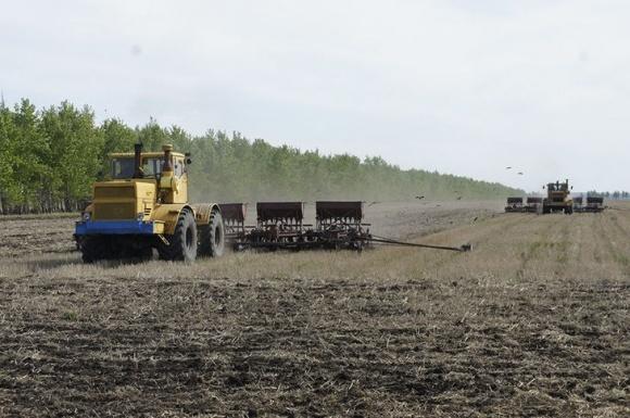 На Львовщине аграрии завершили сев ранних зерновых и зернобобовых фото, иллюстрация
