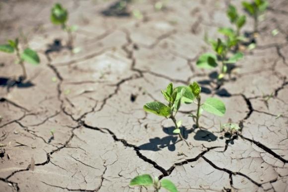 В Германии боятся, что засуха случится третий год подряд фото, иллюстрация