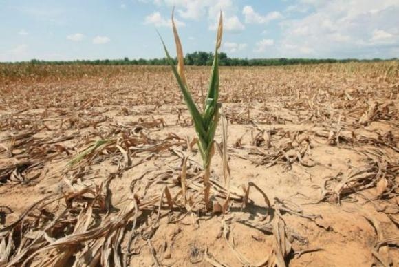 Посухи останніх років в Європі були найсильнішими за понад 2000 років, — учені фото, ілюстрація