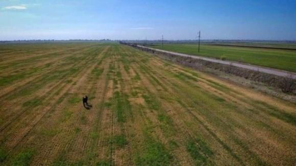 Одесские фермеры, пострадавшие от засухи, получили первые 125 тонн зерна на посевную фото, иллюстрация