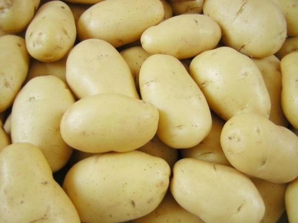 Обвал цен на картофель в Украине был недостаточным, чтобы остановить его импорт из России фото, иллюстрация