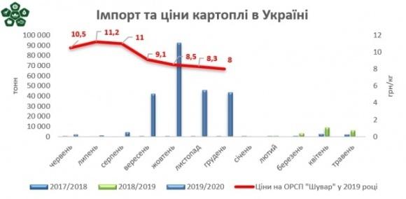 Картопля в Україні дешевшає. Чи надовго? фото, ілюстрація