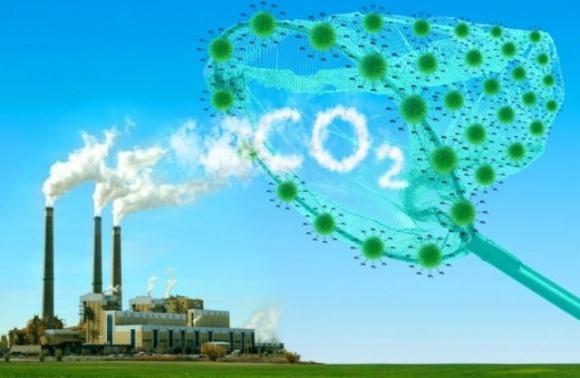 Украина планирует сократить выбросы агросектора на 14% к 2030 году фото, иллюстрация