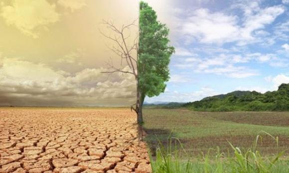 2% от ВВП — в Бельгии подсчитали ежегодные убытки от изменения климата фото, иллюстрация