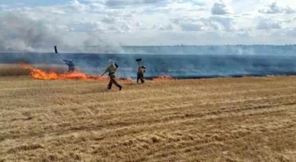 На Харківщині з початку збиральної кампанії виникло 13 пожеж  фото, ілюстрація