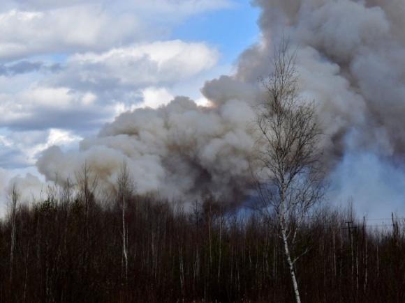 Чому нинішні пожежі — тільки початок катастрофи? фото, ілюстрація