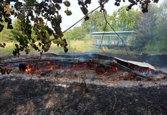 В пожаре в Полтавской области сгорели десятки ульев с пчелами  фото, иллюстрация