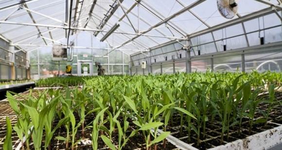 АМКУ дал разрешение «Агромиру» приобрести агропредприятие «Зернолия» фото, иллюстрация