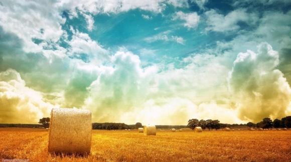 Що станеться з латифундистами після здорожчення землі? фото, ілюстрація