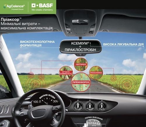 BASF виводить на ринок перший SDHI-фунгіцид на зернові культури Пріаксор™ за доступною ціною фото, ілюстрація
