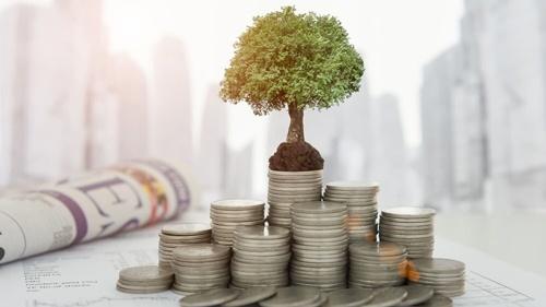 Названы страны-лидеры по прямым инвестициям в агросектор Украины фото, иллюстрация