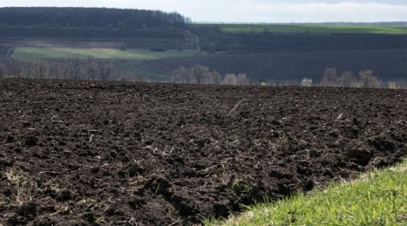 Лишь 20% украинцев поддерживают открытие рынка земли фото, иллюстрация