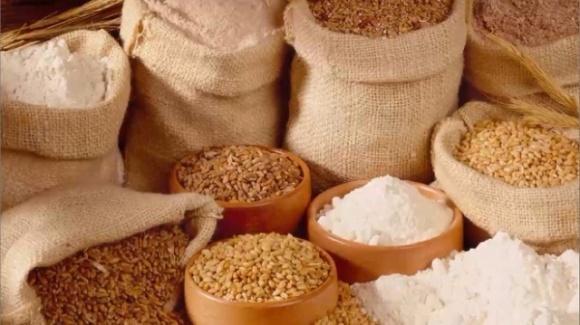 Китайские агрокомпании создали международную ассоциацию поставщиков зерновых продуктов фото, иллюстрация