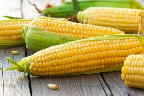 Україна збільшила експорт кукурудзи на 75% фото, ілюстрація